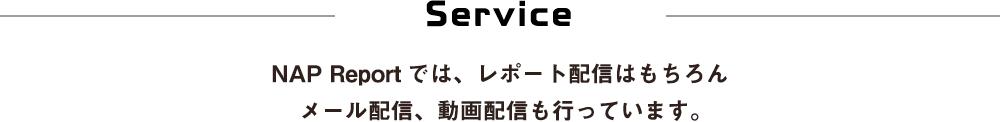 Service NAP Reportでは、レポート配信はもちろんメール配信、動画配信も行っています。